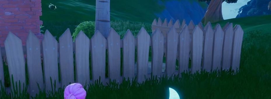 ソルティ・スプリングスの柵