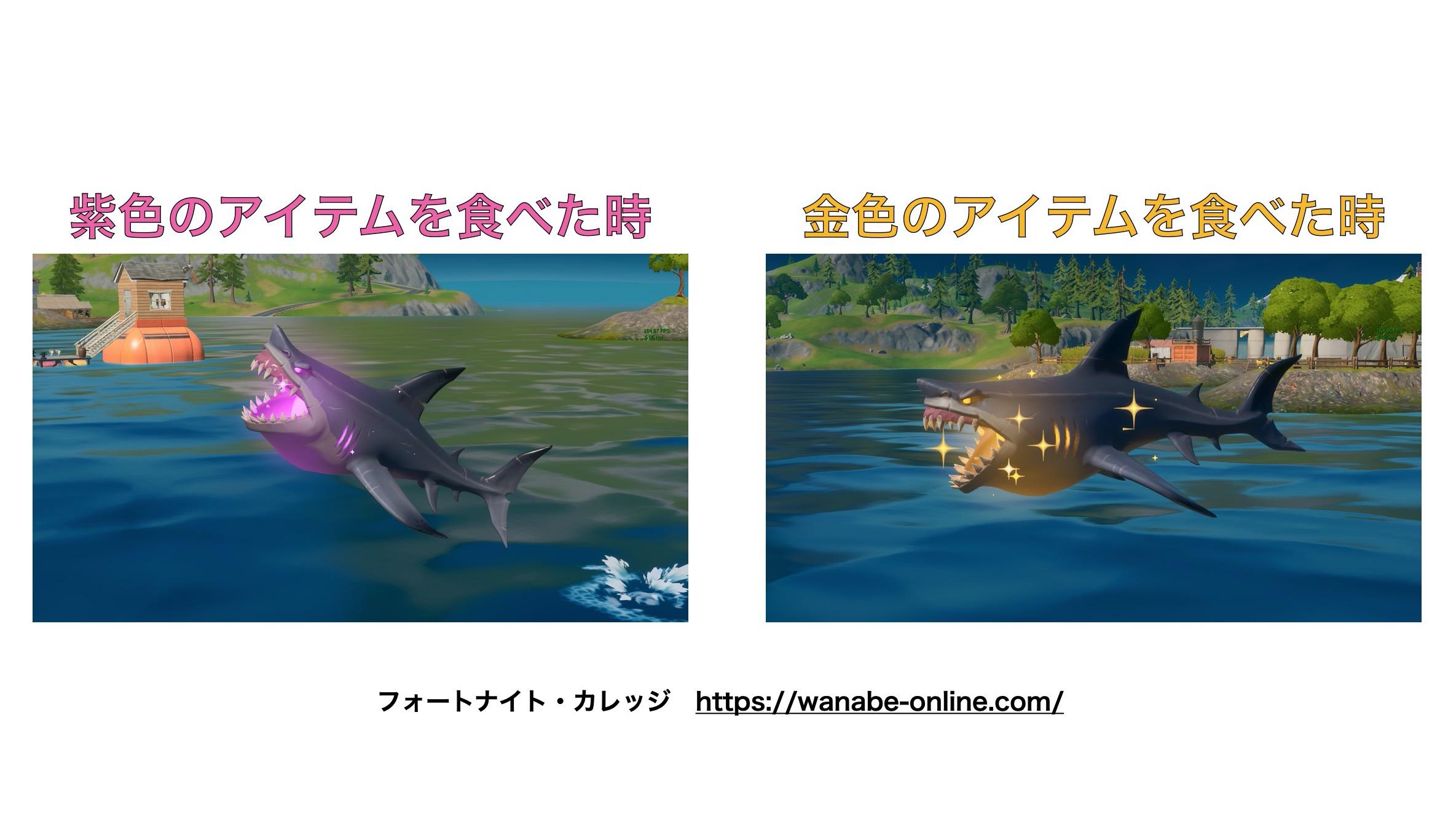 サメ(紫・金)